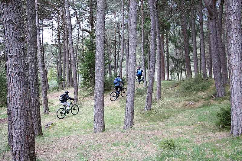 Mountainbike Tour als Schulausflug