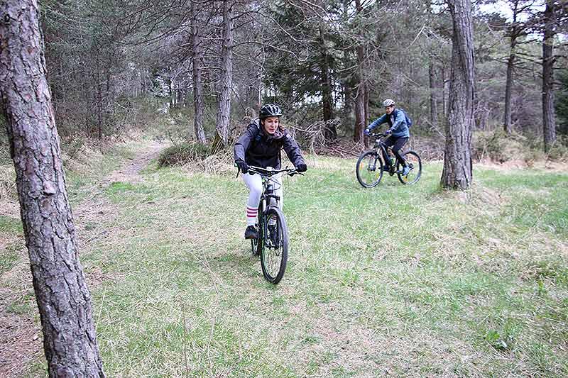 Leiht euch Fahrräder und entdeckt das Altmühltal auf eigene Faust!